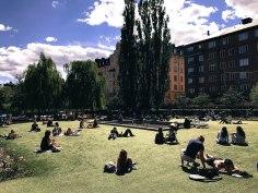 Sunbathing in Nytroget park